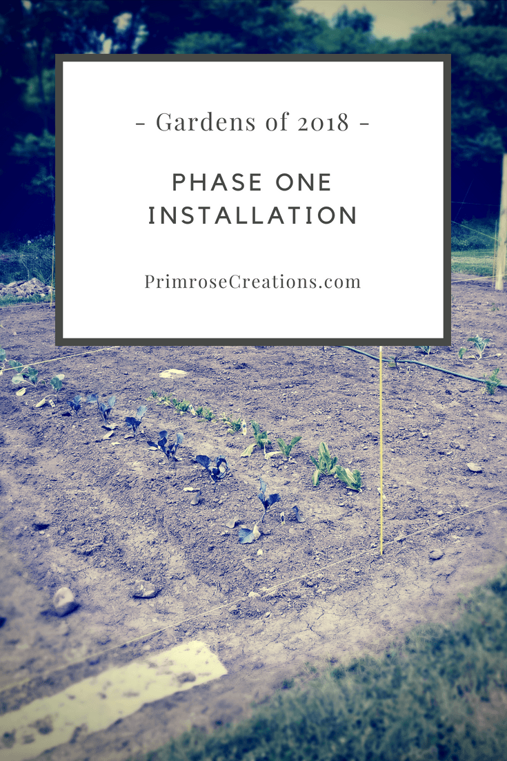 This week we finished a few projects including our vegetable and herb gardens. Checked some items off the project check list that doesn't seem to end! #PrimroseCreations #lovethelifeyoulive #gardensof2018