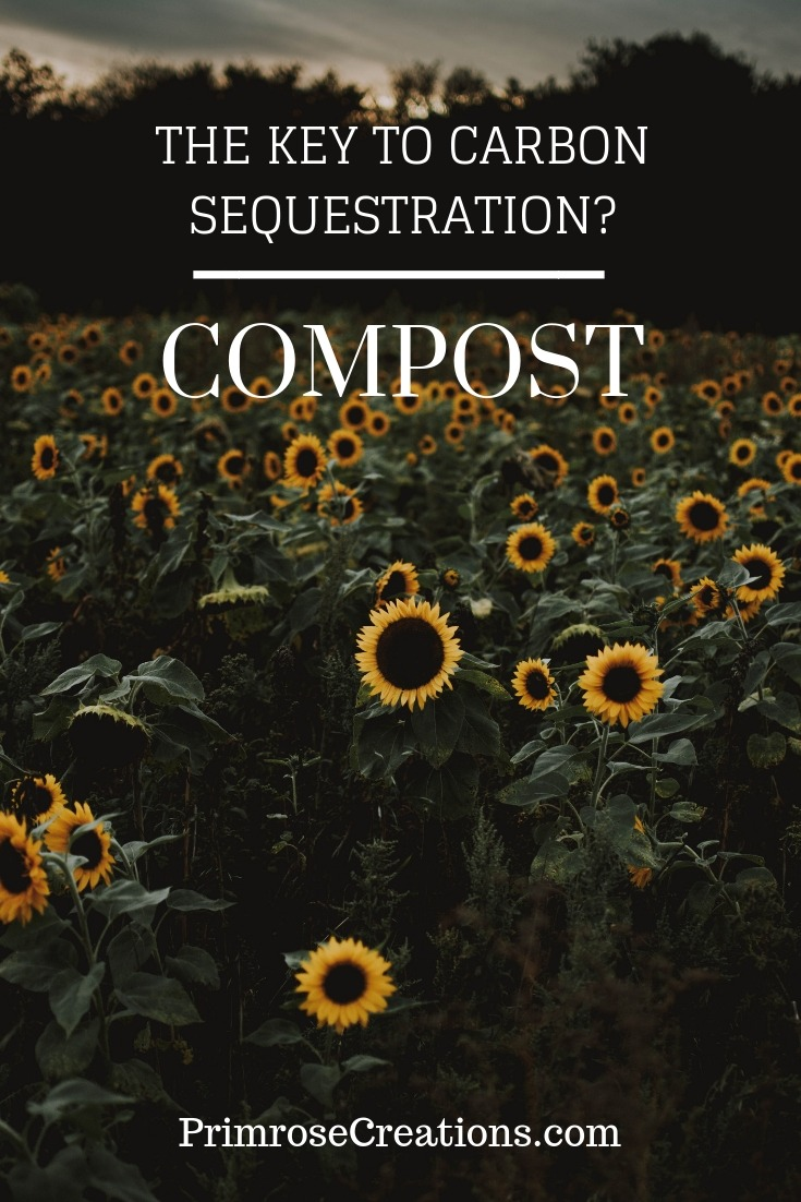 Farming practices may alter carbon sequestration by reversing soil degradation. Through the addition of carbon-rich material, healthy soils would be able to hold more carbon than trees and bother biomass combined.
