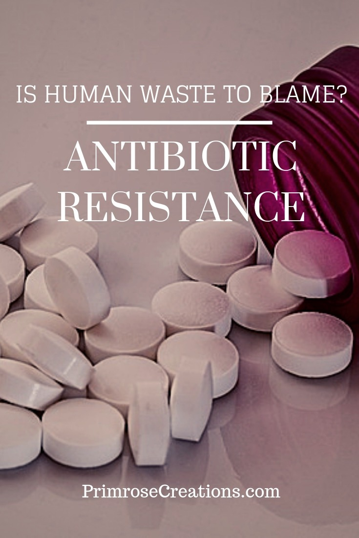 New information may change the way agriculture and pharmaceutical companies address the topics of waste and antibiotic resistance.