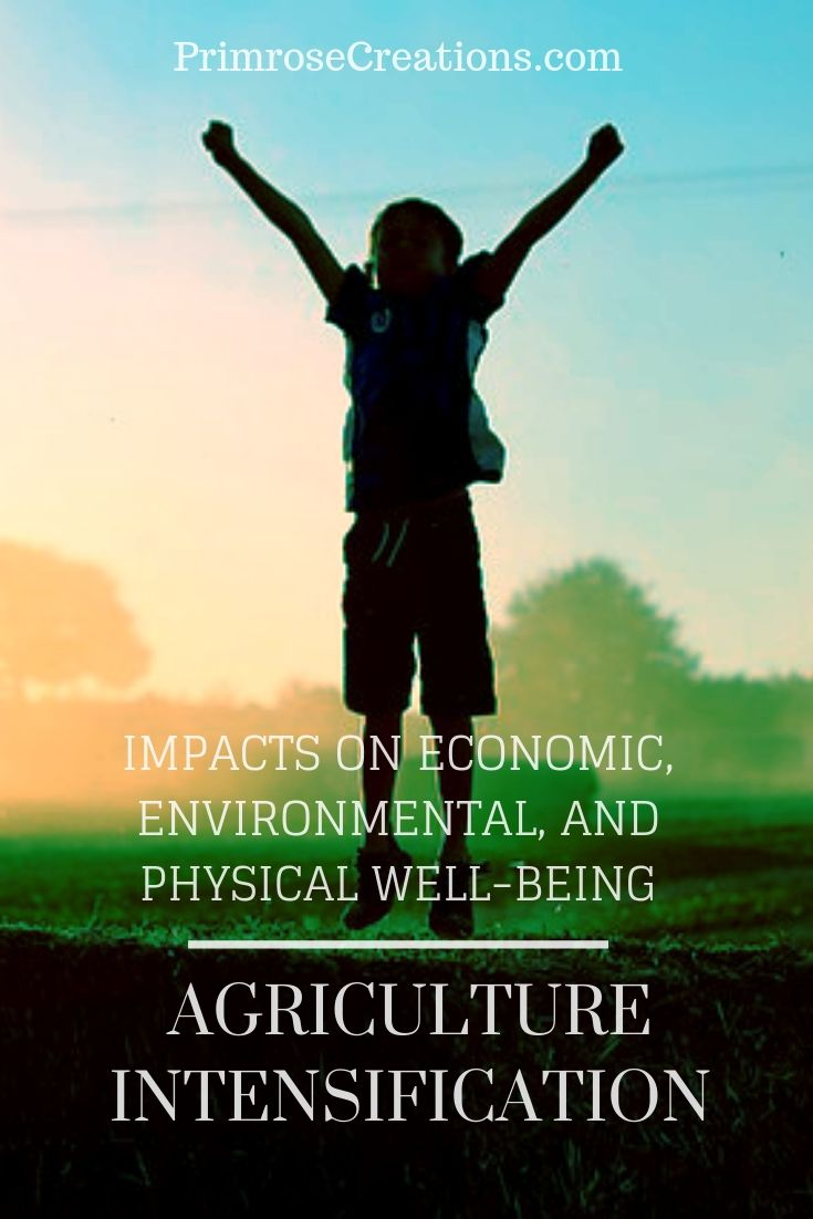 Agriculture, economics, and well-being. Can it benefit the environment?