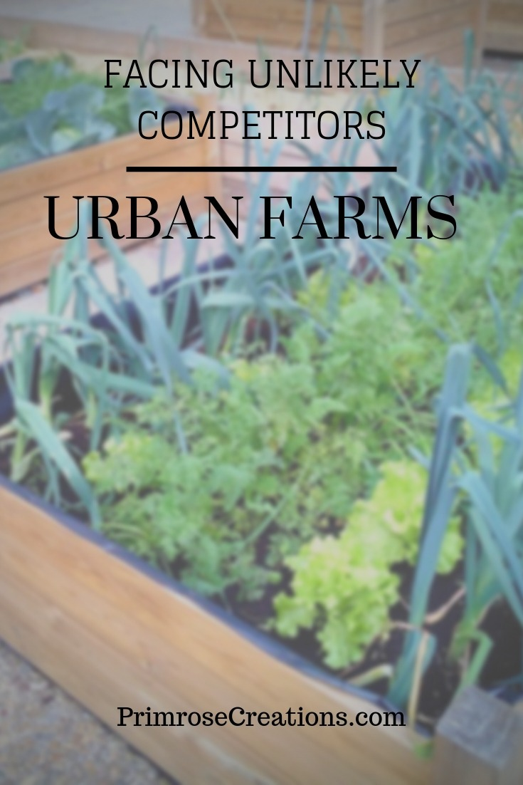 New studies find that urban farms are facing increased competition from nonprofits but are continuing to succeed through community support