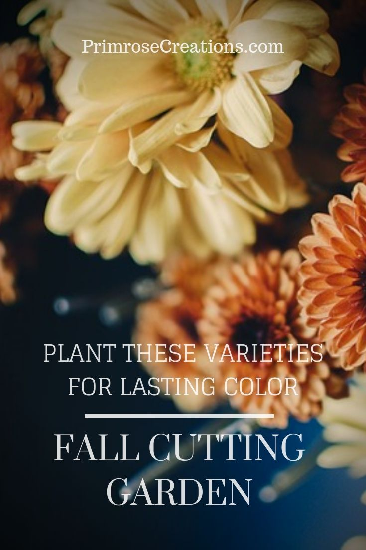 Add these flower varieties to your cutting garden for long-lasting color this fall