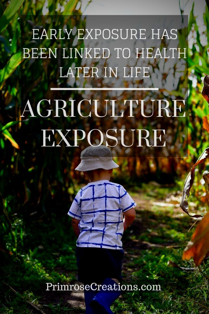 Modern agriculture advancements have impacted the health of individuals in the United States. Early agriculture exposure has the potential to reverse them. #PrimroseCreations #AgricultureExposure