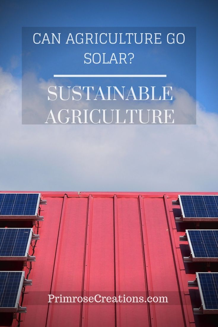 Solar energy has been harnessed for centuries but only recently has become part of the agriculture. Can the industry go solar and become sustainable?