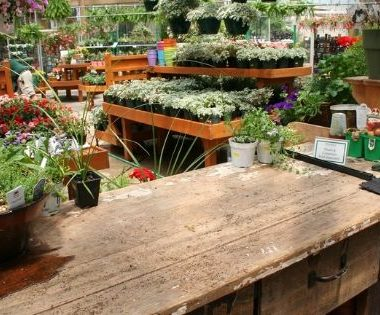 greenhouse potting table