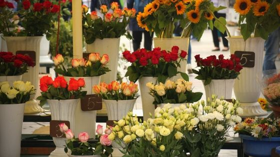 Can the cut flower industry keep up with the demand for locally grown products?