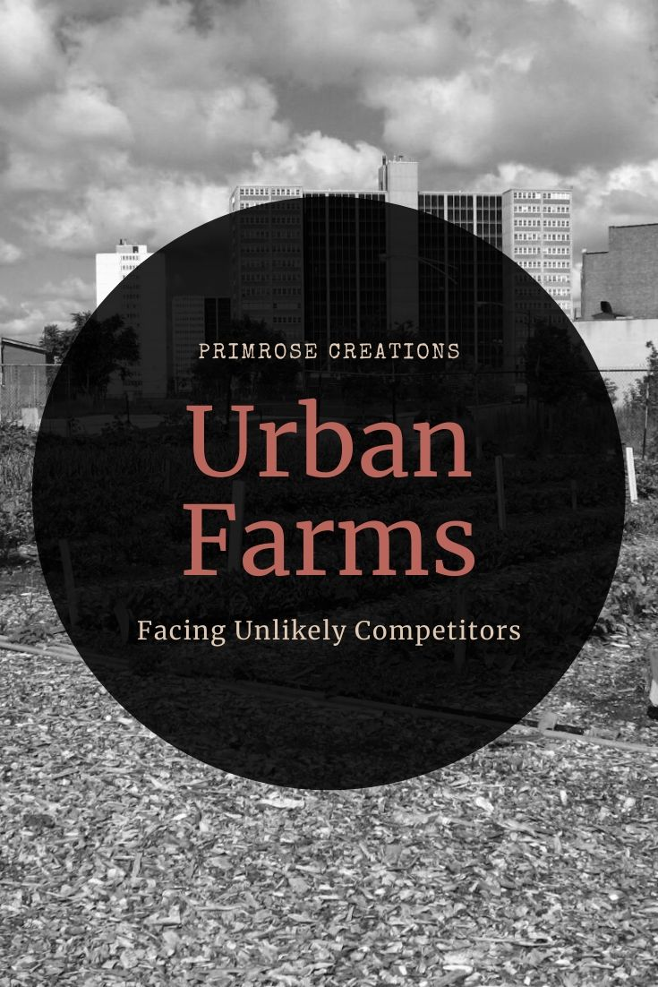 New studies find that urban farms are facing increasing competition from nonprofits but are succeeding through community support.
