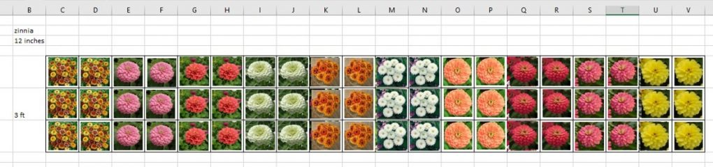 Christina from Primrose Creations breaks down her flower farm flower bed planning process.