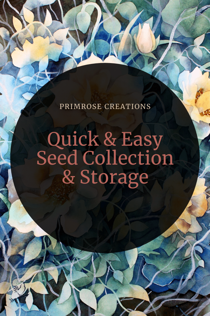 Increase your flower farm profit and save time by implementing these quick and easy methods of seed collecting and storage.