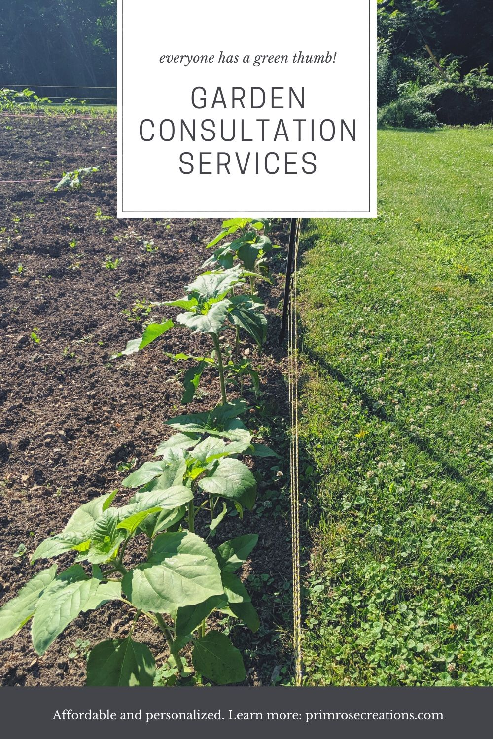 Garden consultations by Primrose Creations are conducted in the Amsterdam, NY area and include services such as garden placement and plant identification